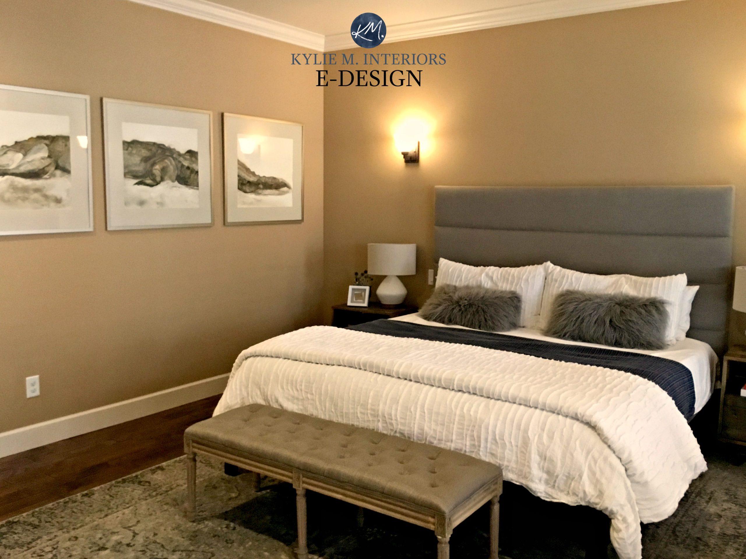 Kylie M Interiors E Design. Benjamin Moore Palm Desert Tan. Before Image.  Client Design