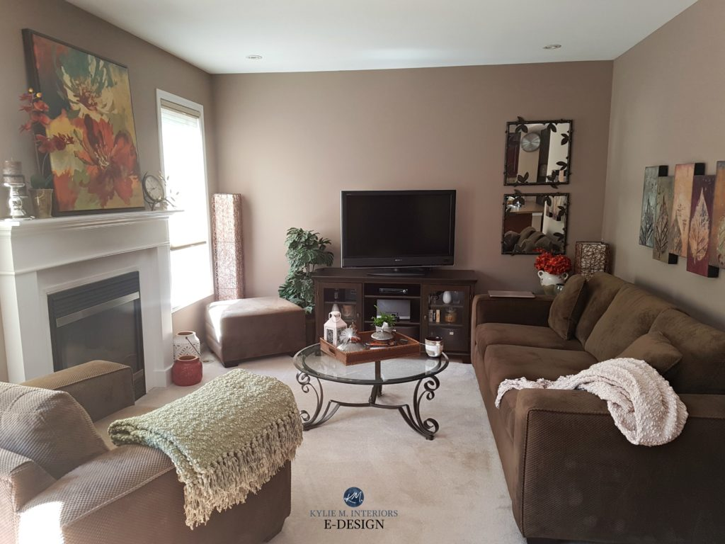 Benjamin Moore Weimaraner taupe paint colour in living room wtih brown accents. Kylie M E-designjpg