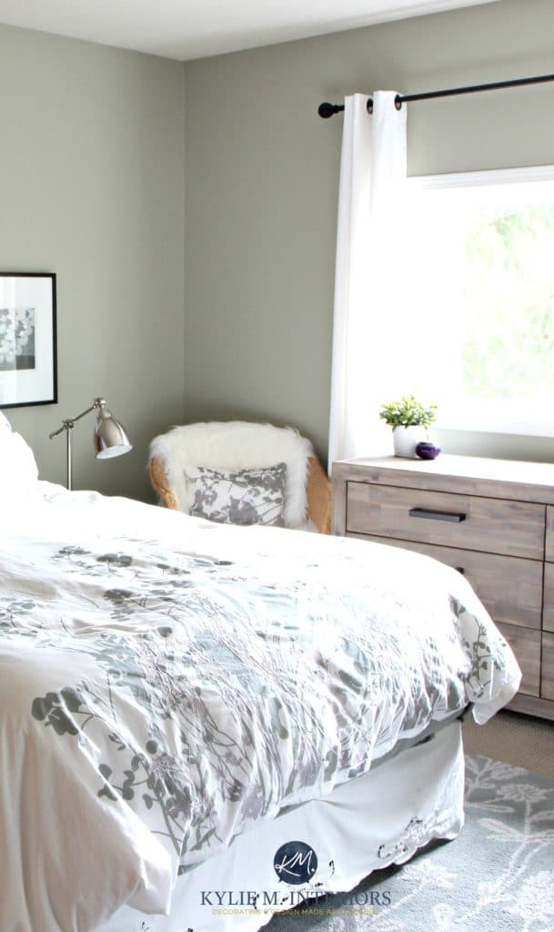 Benjamin Moore Mountain Air in bedroom with wood. Kylie M Interiors E-design (3)