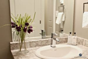 Typhoon Bordeaux by Arborite in powder room with Sherwin Williams Dorian Gray walls