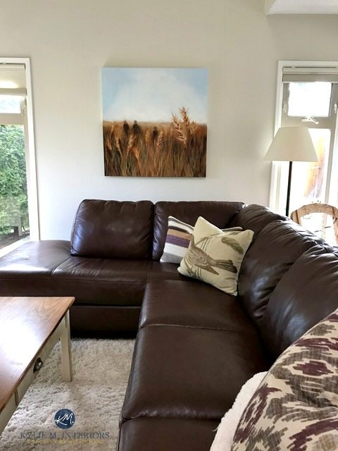Best Gray Paint For Low Light East Facing Rooms