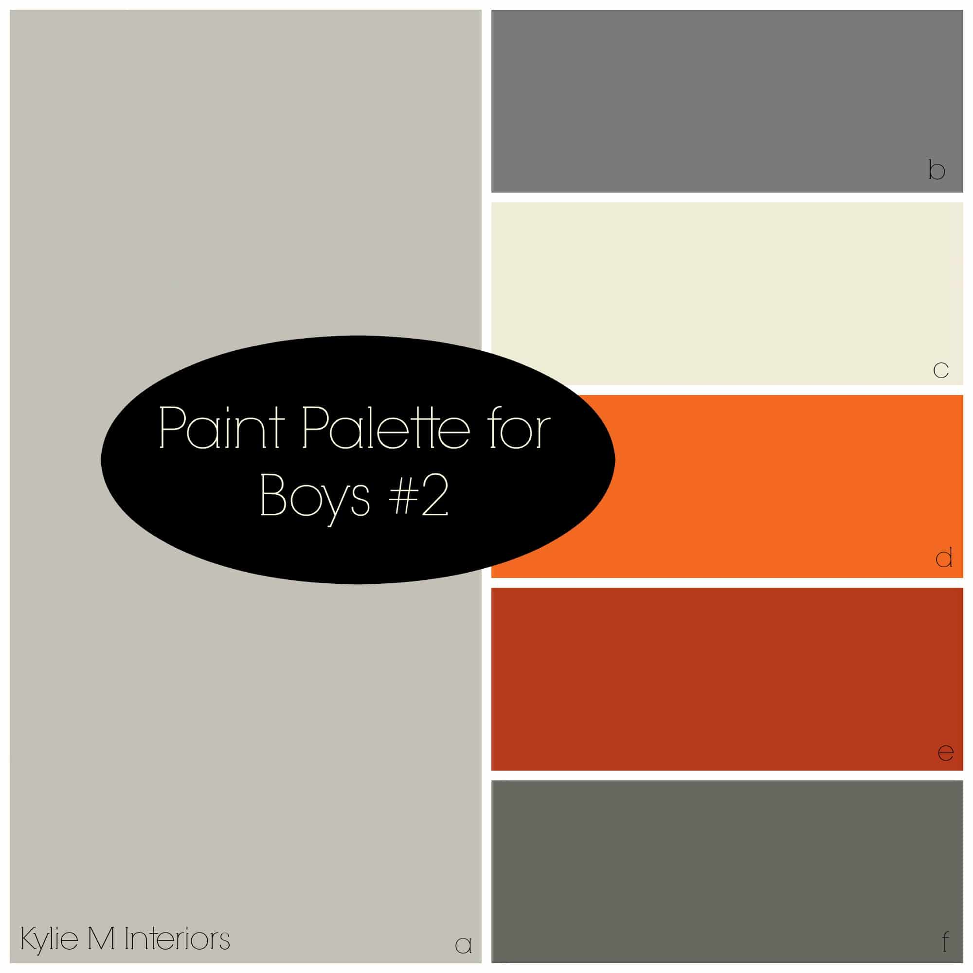 Paint Colour Palette For Boys Room Based On Sherwin