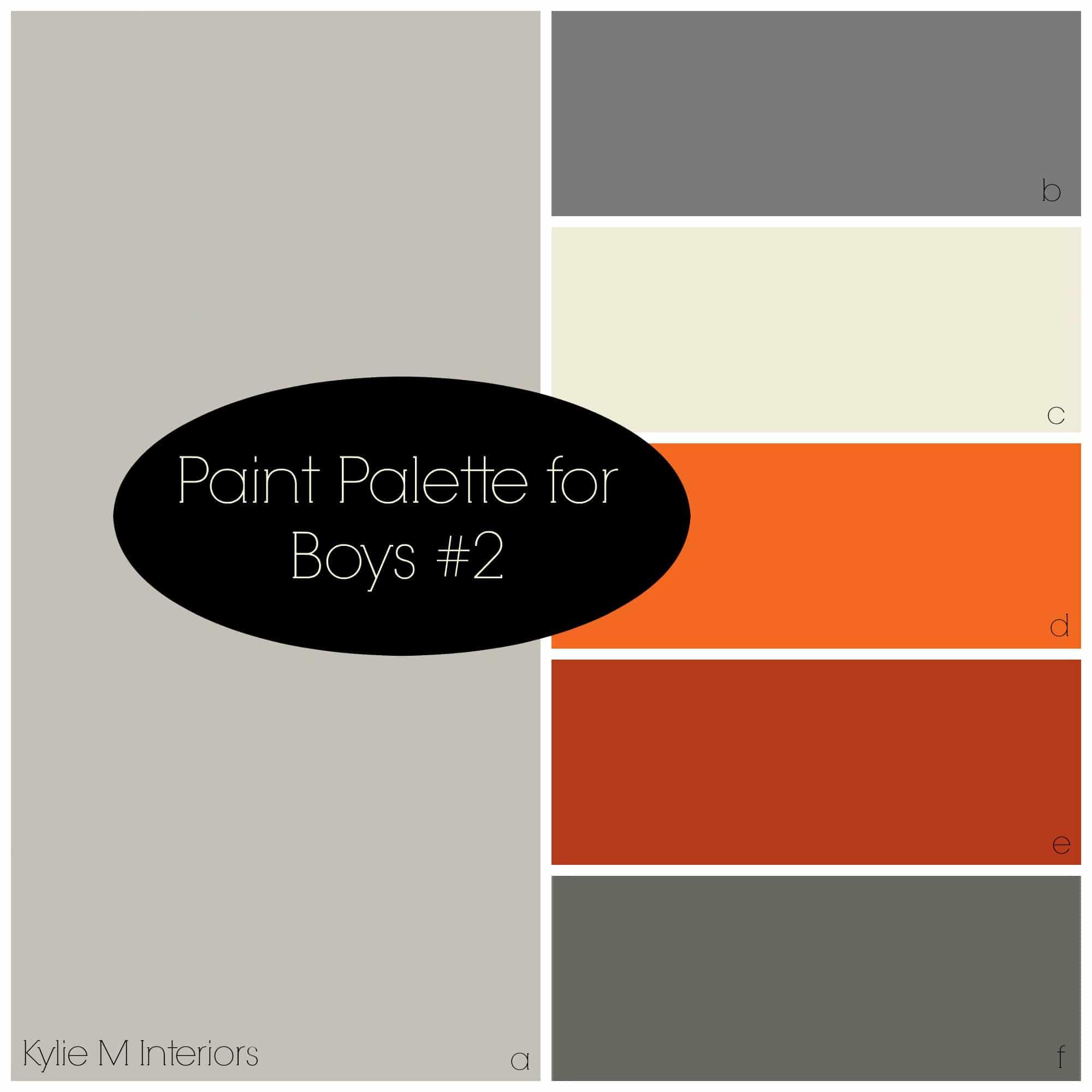 Paint Colour Palette For Boys