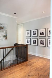 Benjamin Moore Gray Owl one of the best gray paint colours for a dark hallway or staircase by Kylie M Interiors. With photo gallery wall of kids and dark wood and metal stair railing. Kylie M Interiors e-design