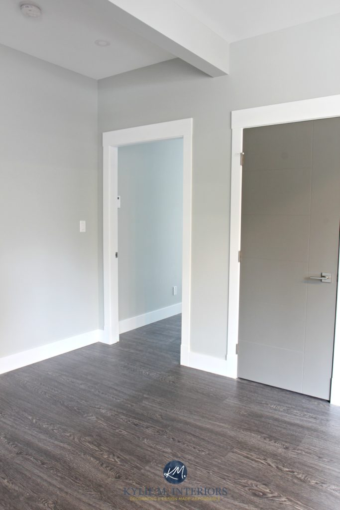 Benjamin Moore Stonington Gray hallway with white trim and Chelsea Gray painted door. Kylie M Interiors Colour Consultant online - Copy