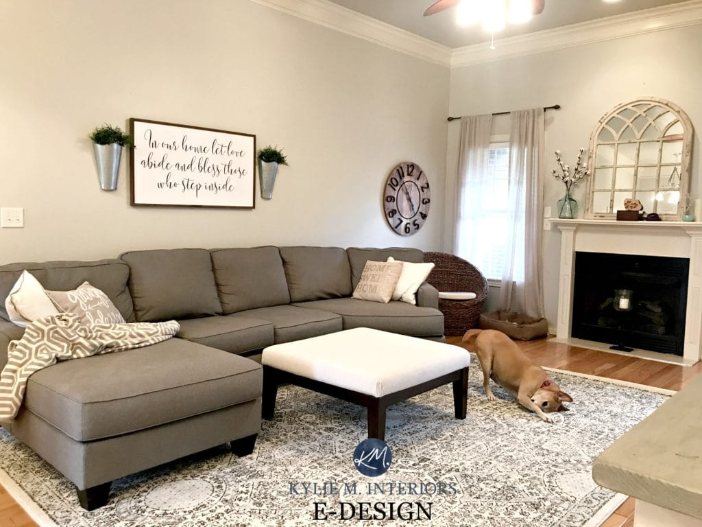 Sherwin Williams Agreeable Gray in living room with gray sectional couch, area rug, fireplace, mirror. KYlie M E-design and Online Color consulting