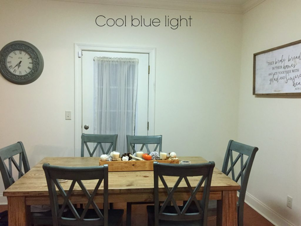 fluorescent-lighting-is-a-cold-blue-light-that-enhances-blue-and-green-and-dulls-warm-colours-kylie-m-interiors