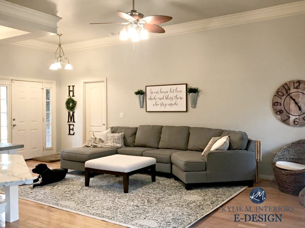 Sherwin Williams Agreeable Gray In Living Room With Sectional Couch And Area Rug KYlie