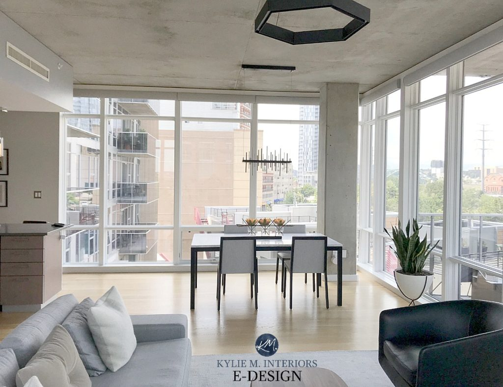 Benjamin Moore Balboa Mist, masculine condo in a style that suits a male or men. Open Layout with warm gray sofa. Kylie M Interiors Online Paint Colour advice and decor blog