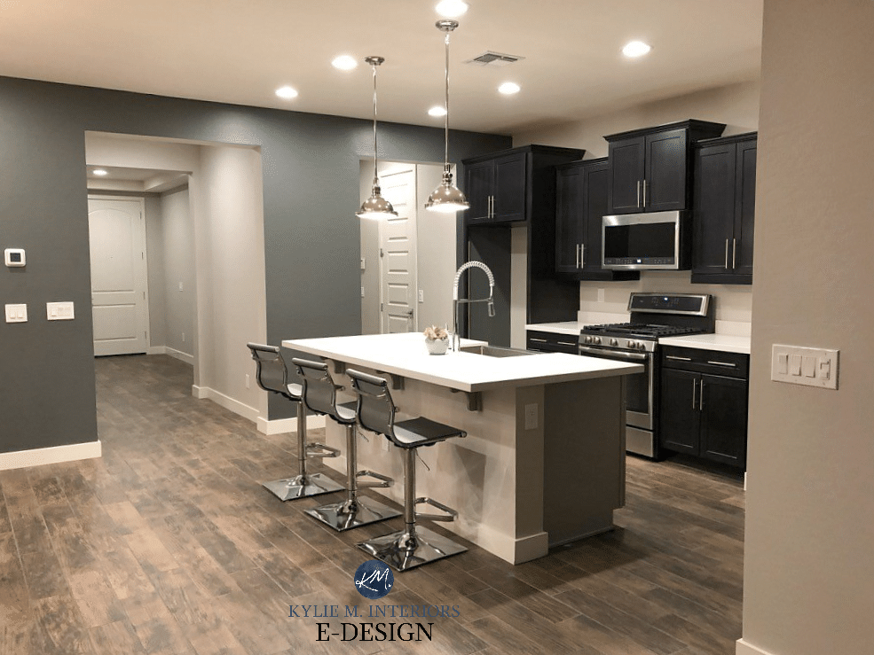 Dark basement room best paint colours, Sherwin Williams Grizzle Gray, Agreeable Gray, tile look wood floor. Kylie M Interiors Edesign, online paint color consulting (2)