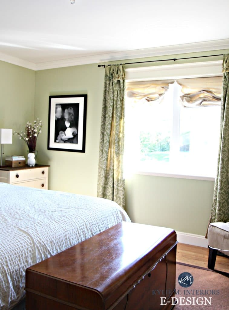 Best green paint colour. Benjamin Moore Fernwood Green. Kylie M Interiors E-design blog, Online Color consultant and expert