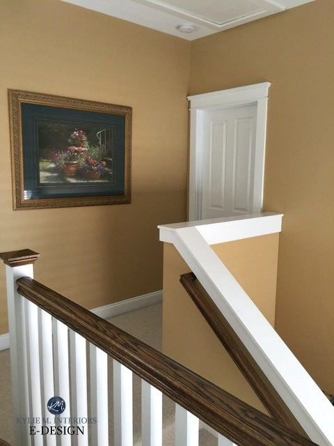 Benjamin Moore Decatur looking paint colour with white trim in hallway