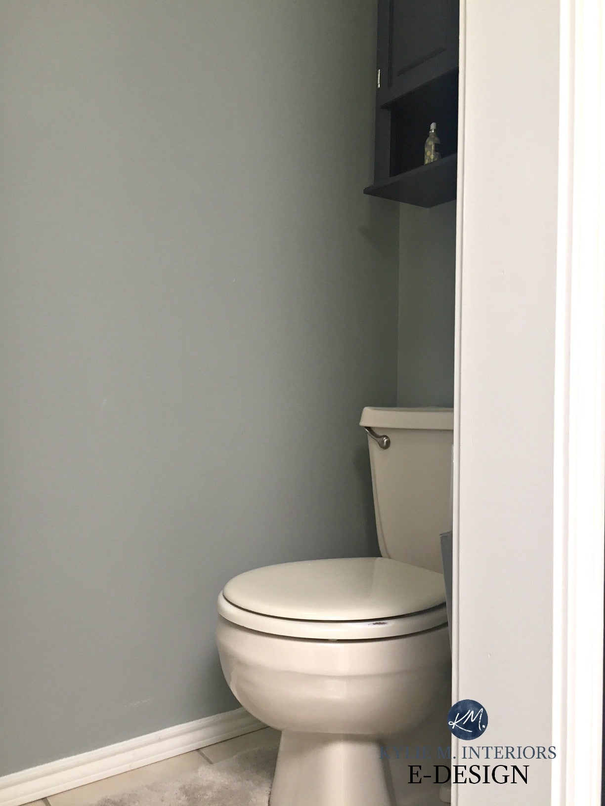 Sherwin Williams gray paint colour with almond bone fixtures ...