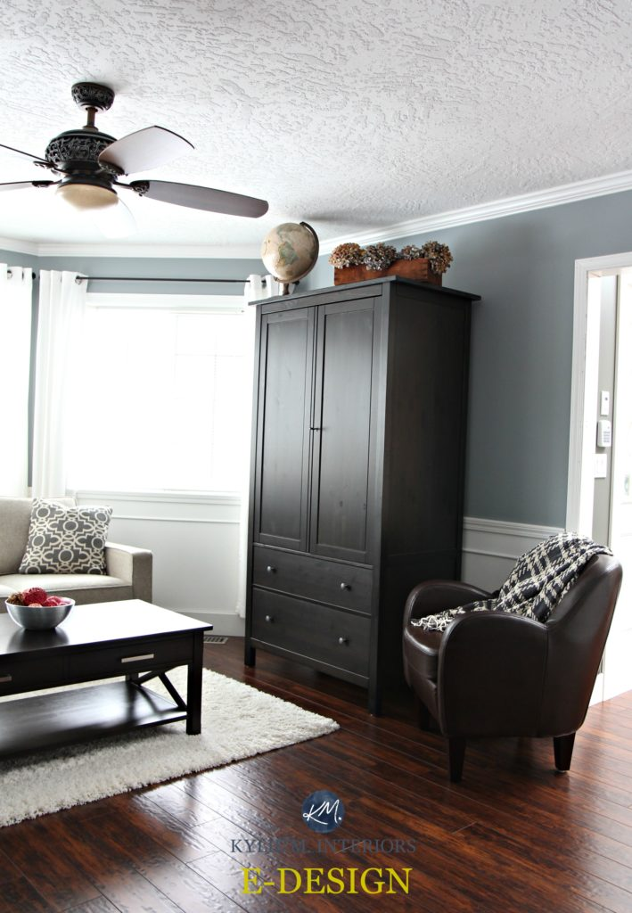Sherwin Williams Network Gray with black armoire and cherry toned red laminate flooring in south facing living room with white trim. Kylie M Interiors E-design and Online consulting - edecor