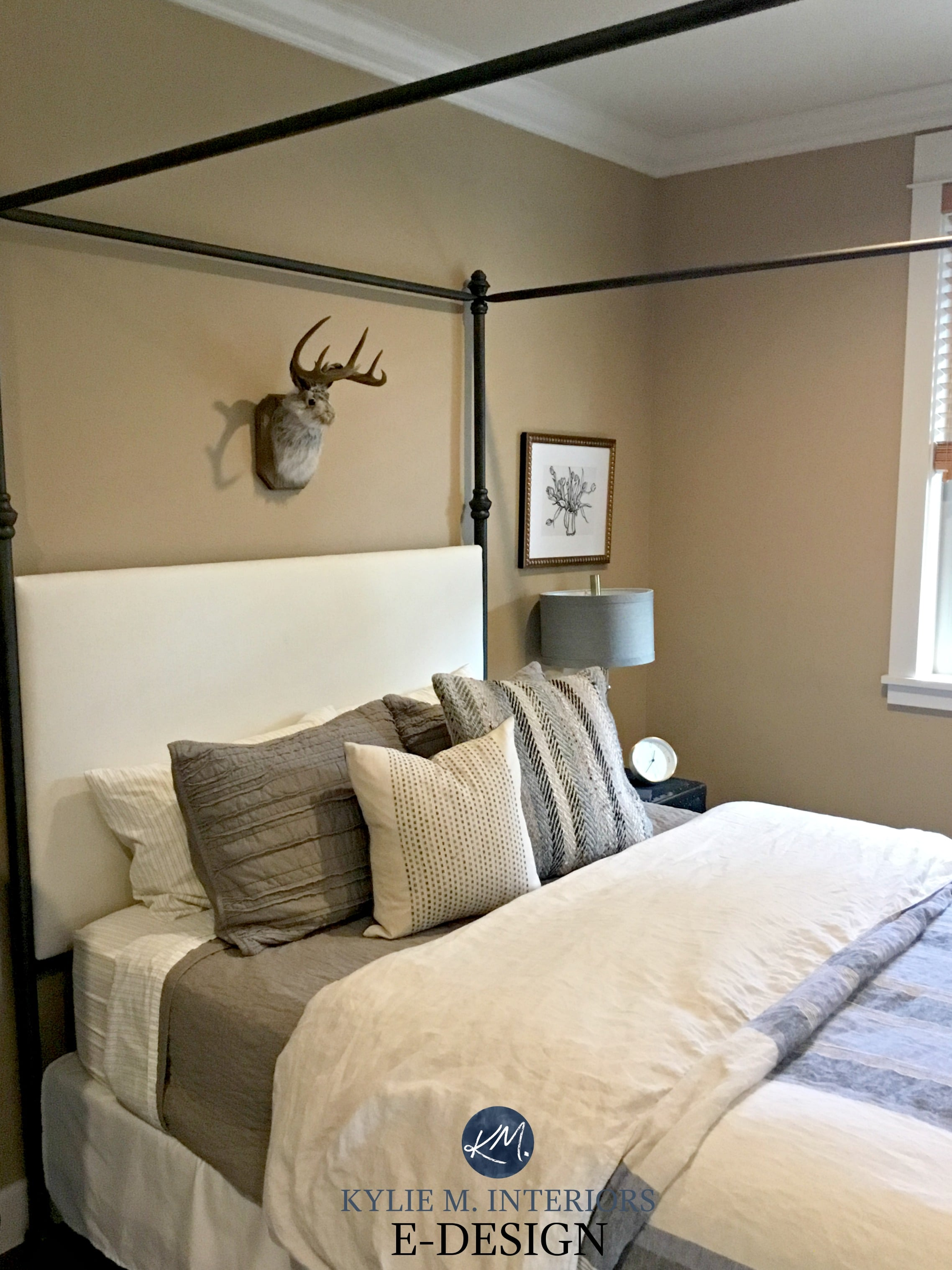 Benjamin Moore Palm Desert Tan. Guest Bedroom. Kylie M INteriors E Design,  Before Image. Client Design