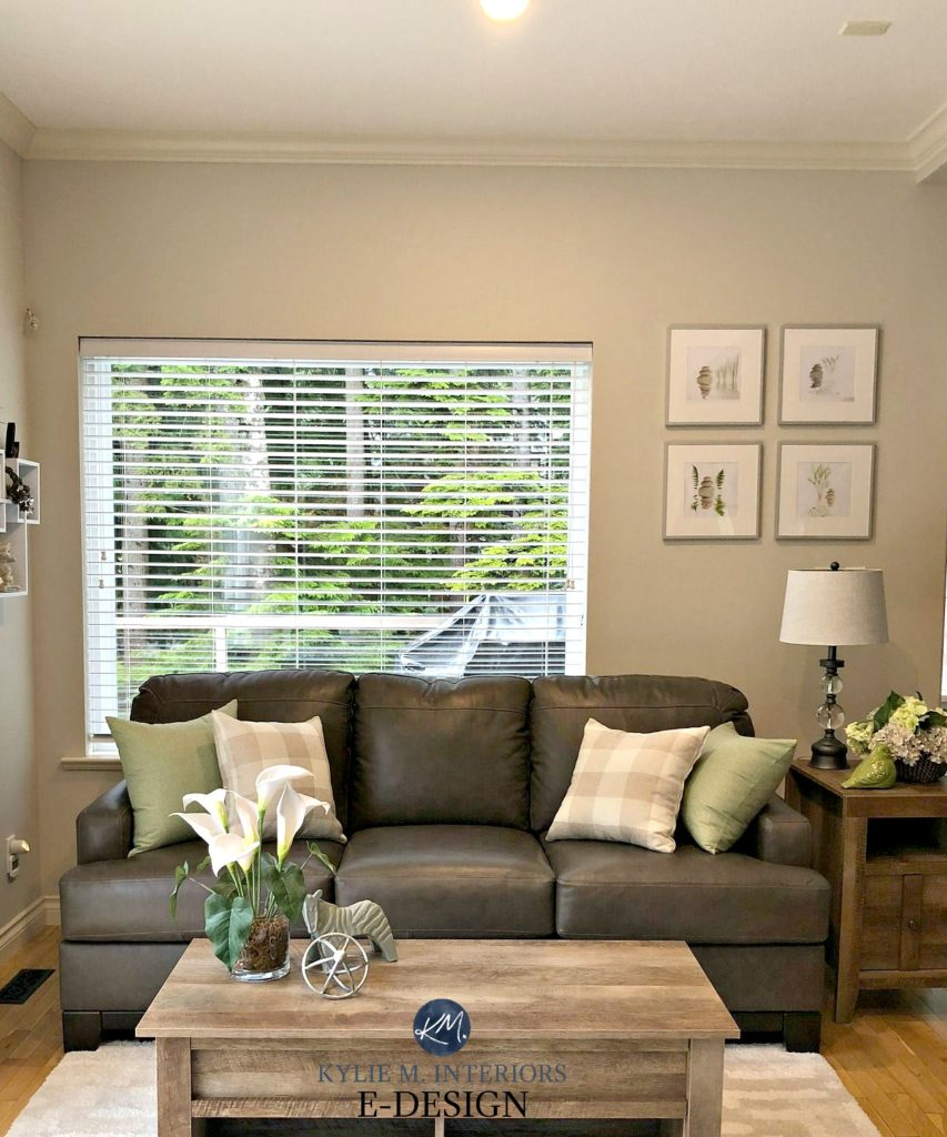 Benjamin Moore Edgecomb Gray, gray, brown couch. Kylie M INteriors edesign, online virtual paint colour consulting and decor blog