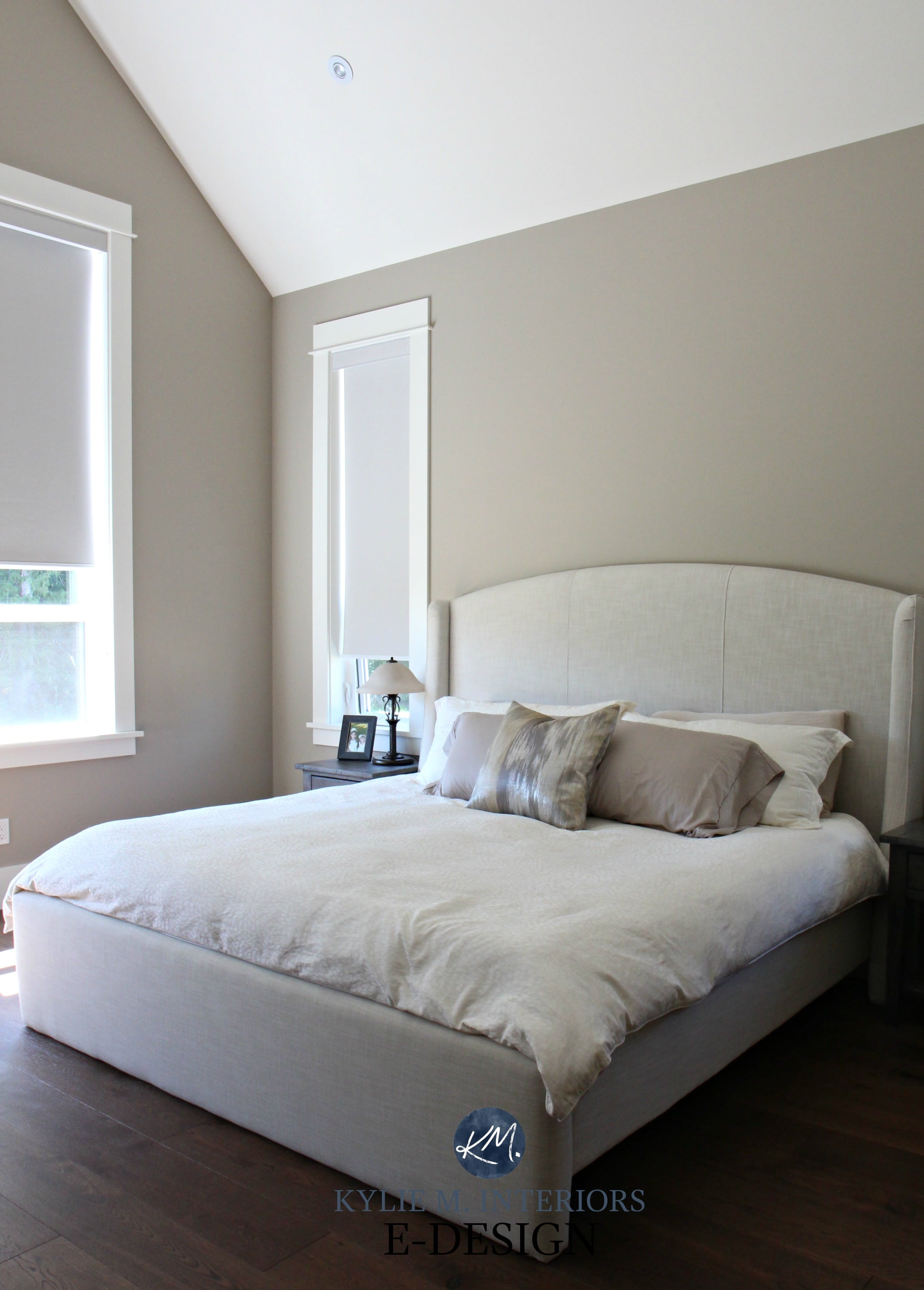 Taupe Paint Colors Living Room: Sherwin Williams Balanced Beige, Mushroom Paint Color