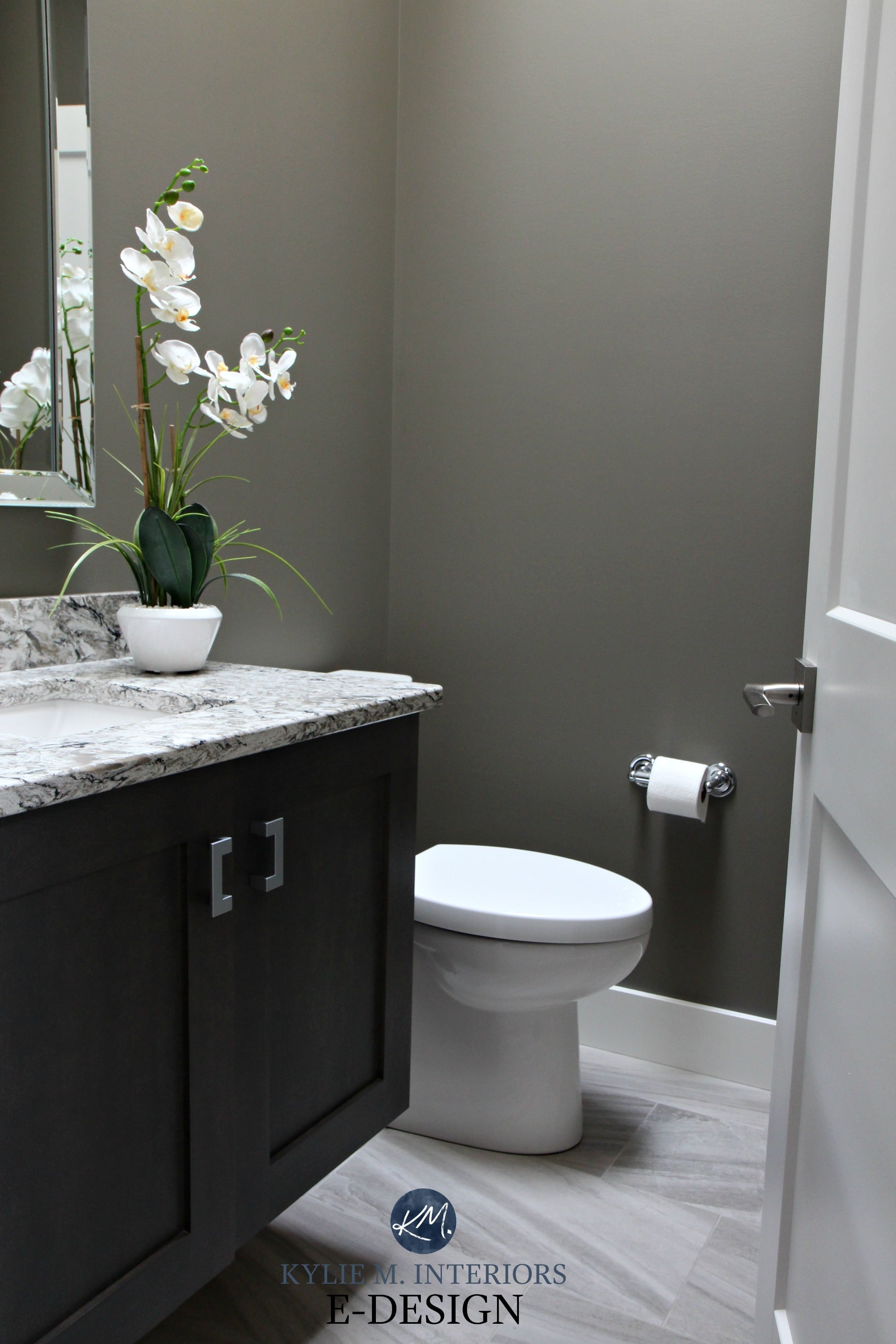 Small bathroom powder room in Sherwin Williams Anonymous ...